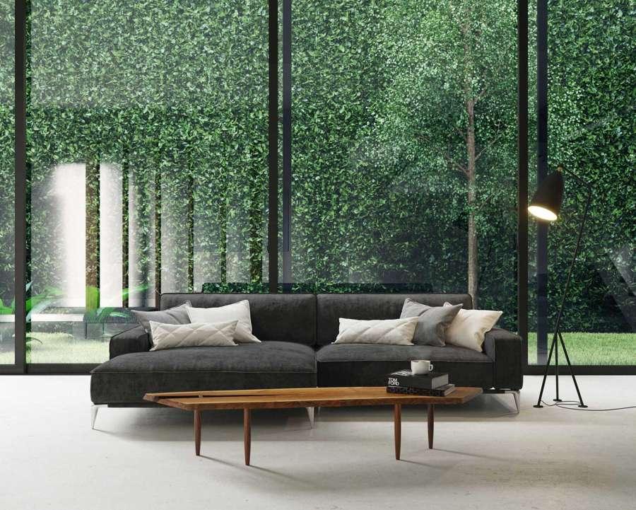 ecological-house